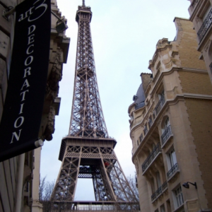 What affect will the Paris attacks have on the oil prices?