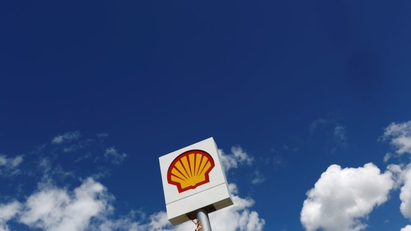 Shell deals with feasible Dutch suit over Nigerian activist's execution